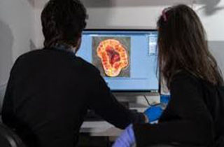 Israelis create cancer drug without animal tests by using human-simulating chip